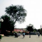 Univerexport 2014 - jesen (62)